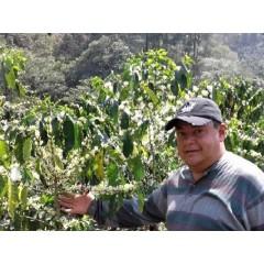 瓜地馬拉 2016卓越盃第14名 拉維加優勝計劃