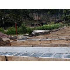 瓜地馬拉 小農競賽優勝 理想莊園 波旁種