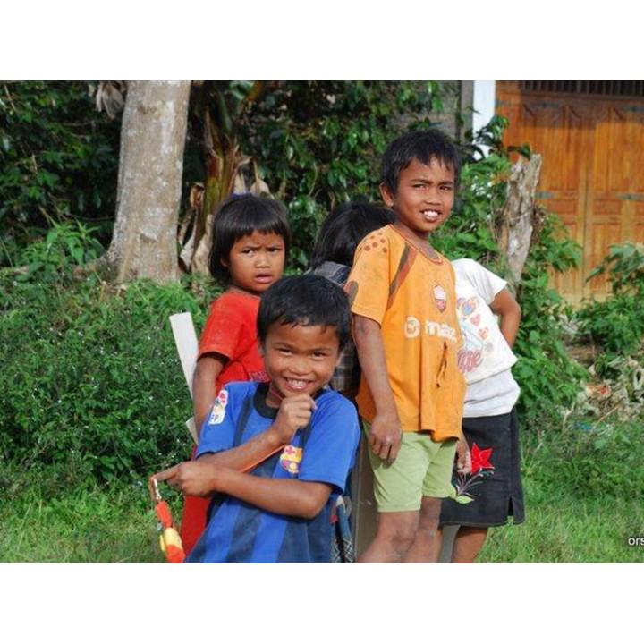 印尼 黃金曼特寧