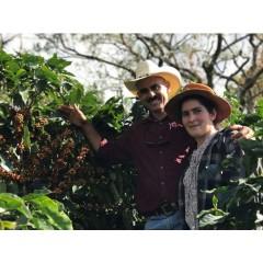 宏都拉斯 連匹拉區 老松莊園 鐵皮卡種 蜜處理