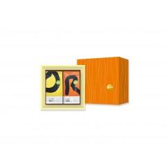 預購-經典禮盒A組-瓜地馬拉 超高海拔/衣索匹亞 孔加西蝶