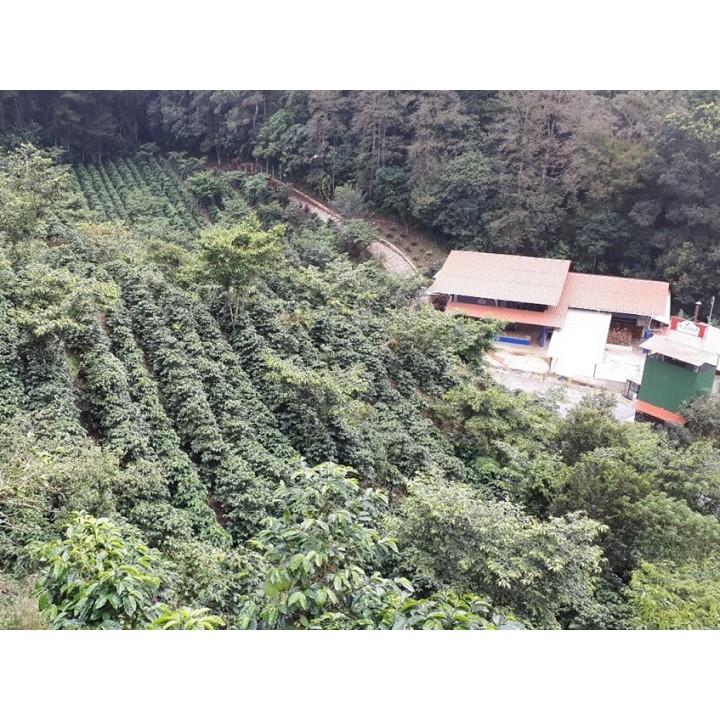 堅果巧克力套餐-瓜地馬拉 極光莊園/宏都拉斯 福桂樹莊園