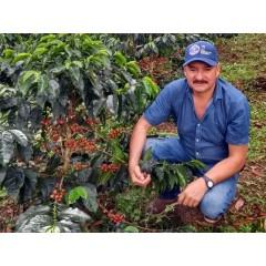 哥倫比亞 薇拉區 布維納威斯達莊園 粉紅波旁種 水洗處理 批次104
