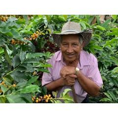 哥倫比亞 拉蜜拉莊園 卡杜拉蜜處理 105批次