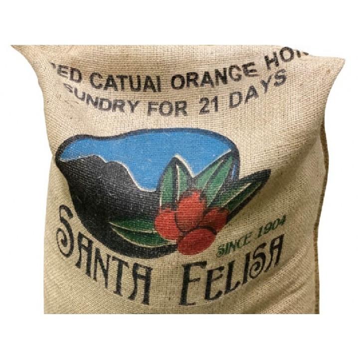 瓜地馬拉 阿卡提蘭夠山谷 聖費麗莎莊園 紅卡太一種 橘蜜處理 批次1750