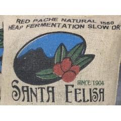瓜地馬拉 聖費麗莎莊園 日曬慢乾 紅帕奇 1550批次