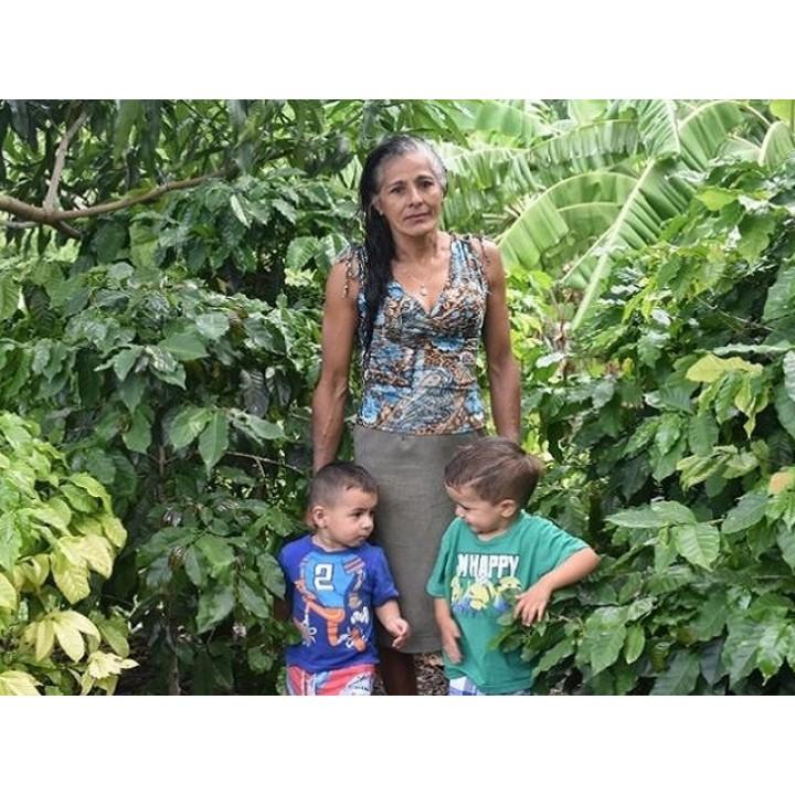 宏都拉斯 葡萄莊園 卡太一種 水洗處理