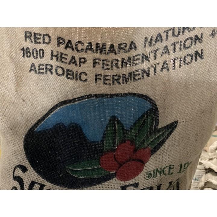 【集單烘焙】團購推薦-瓜地馬拉 阿卡提蘭夠山谷 聖費麗莎莊園 紅帕卡馬拉 日曬自然乳酸發酵處理 1600批次