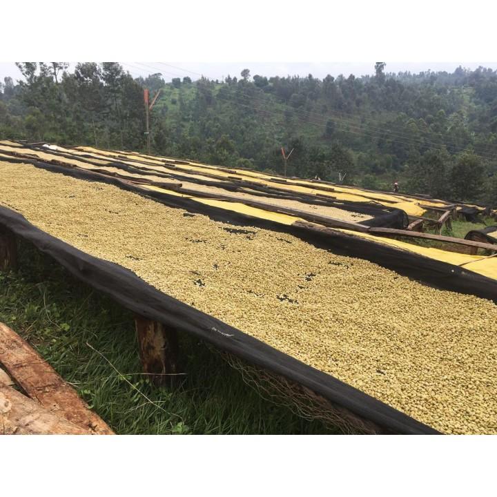花香莓果組-衣索匹亞 安娜索菈莊園水洗/肯亞 罕狄給處理廠AA