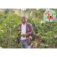 【1/4磅包裝】【咖啡熟豆】衣索匹亞 2020卓越盃季軍 西達摩 魯穆達莫 水洗