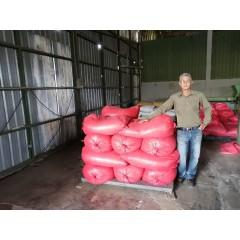 尼加拉瓜 2020卓越盃第14名 KOA莊園 卡杜拉種 水洗處理