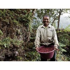 瓜地馬拉 薇薇高原 拉伯莎莊園 水洗波旁種