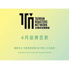 【熟豆100克】4月TRN品牌豆-薩爾瓦多 布魯馬斯莊園 帕卡馬拉種 水洗